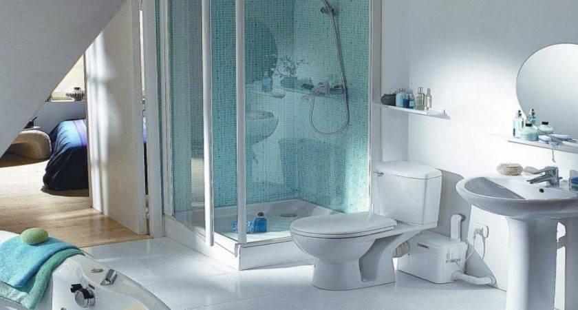 Paint Laundry Room Basement Toilet Pump Systems Lowe