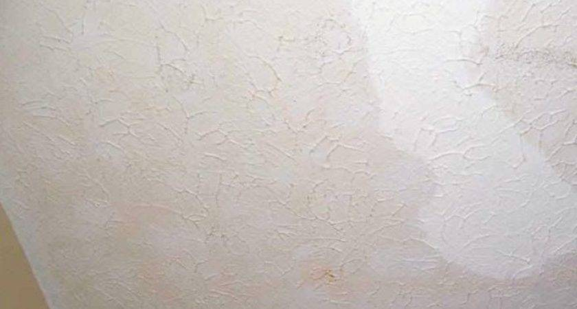 Paint Over Water Stained Ceiling Agrimarques