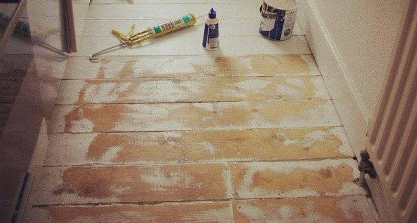 Painted Plywood Floors Theplywood