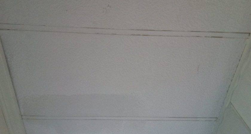 Painting Mobile Home Ceiling Hometalk