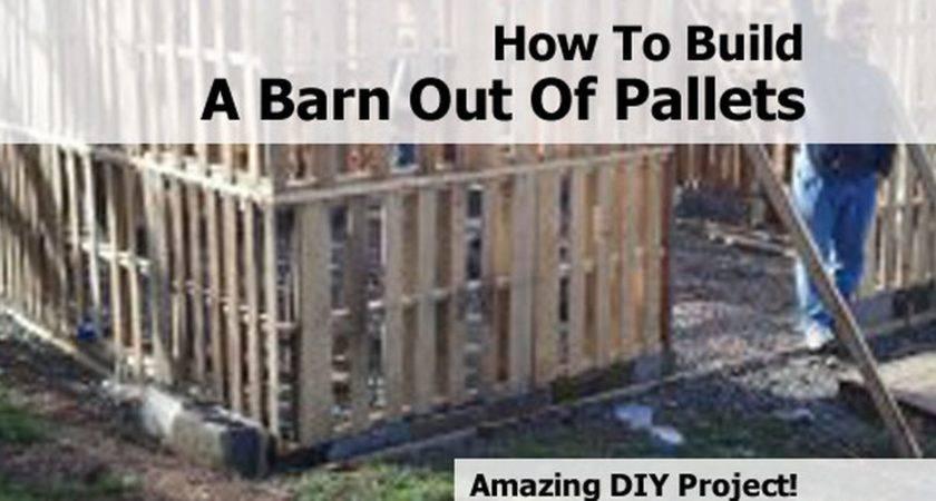 Pallet Diy Plans