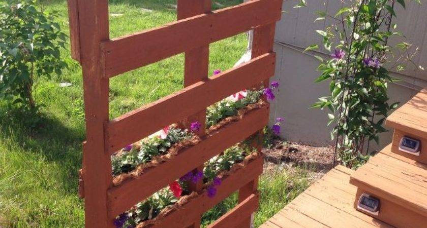 Pallet Privacy Living Wall Hometalk