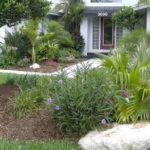 Palm Trees Florida Landscaping Ideas Jbeedesigns Outdoor