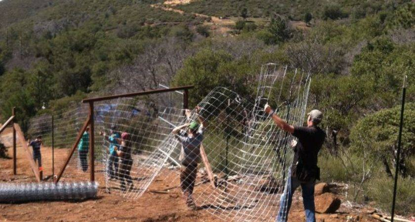 Pinecrest Retreat Grows Mountain Chickadee Farm