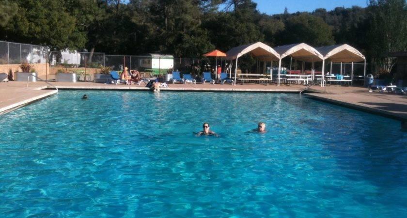 Pinecrest Retreat Poolside Zen Experience