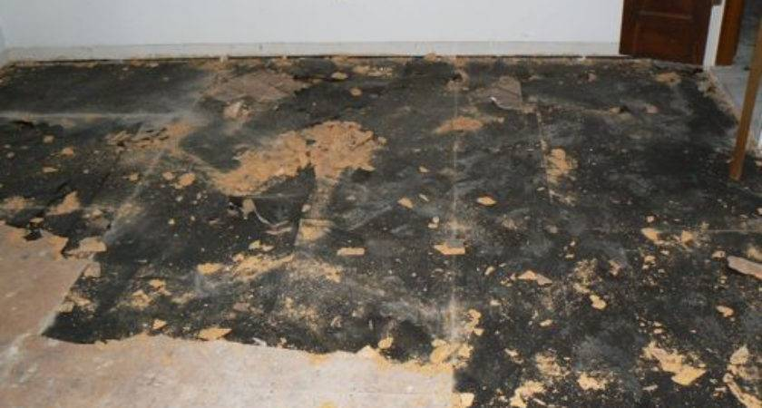 Plank Subfloor Archives Great Home