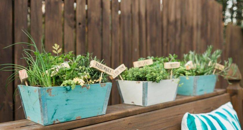 Plant Mini Herb Garden Hgtv