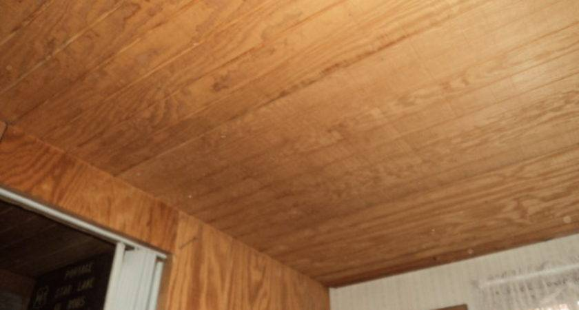 Plywood Interior Paneling Other Cheap Options