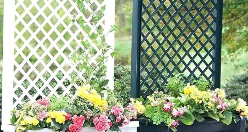 Portable Outdoor Privacy Screen Backyard