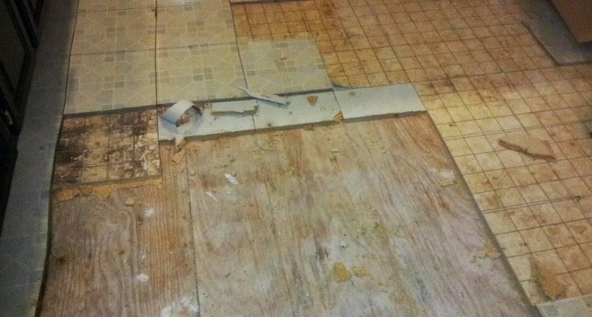 Remove Linoleum Subfloor Thefloors