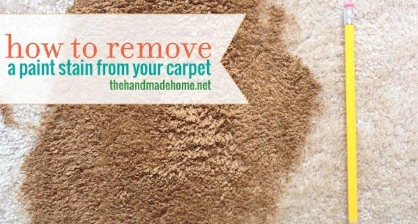 Remove Paint Carpet Home Honoroak