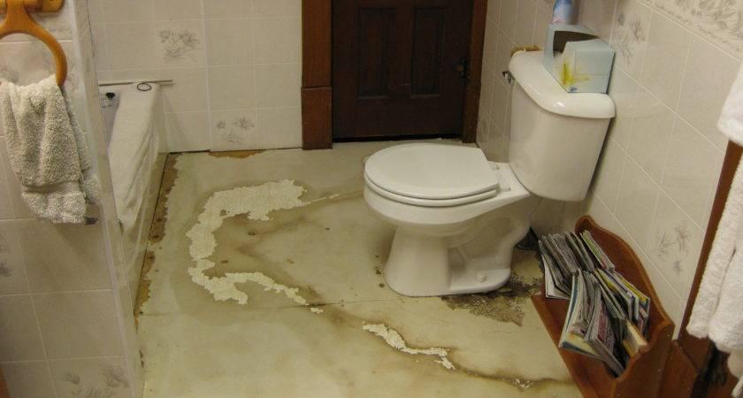 Replace Rotting Bathroom Floor Ehow