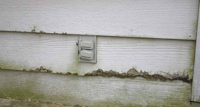 Replacing Cracked Wood Siding