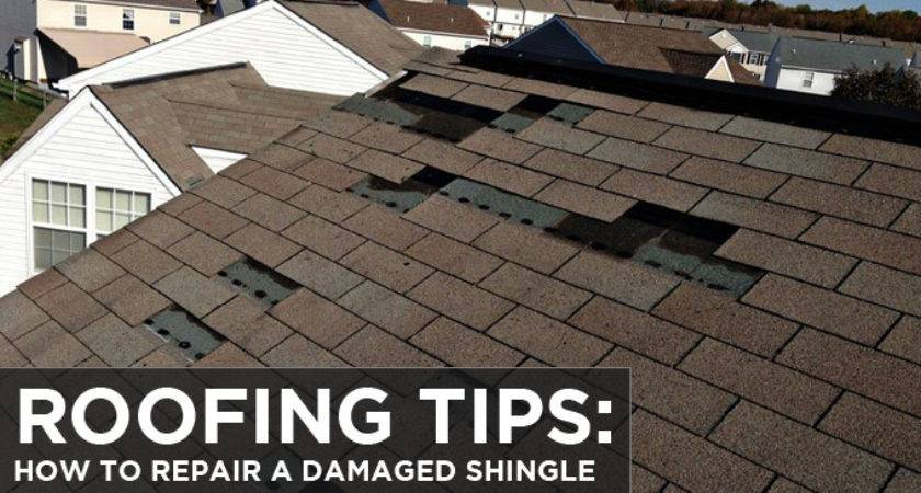 Roofing Tips Repair Damaged Shingle Budget
