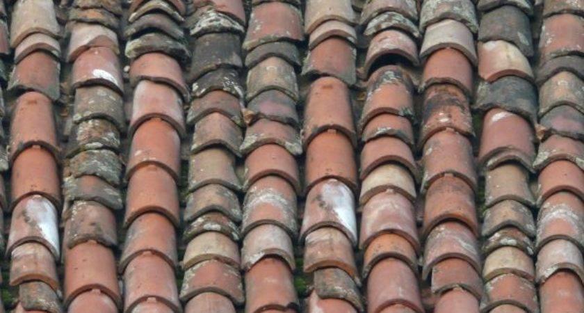 Round Shingled Roof Texture Texturelib