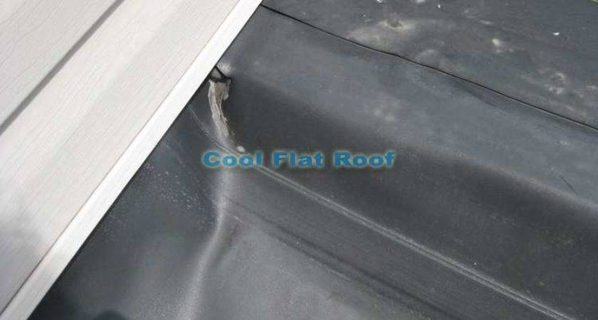 Rubber Roof Replacement Boston Cool Flat Blog