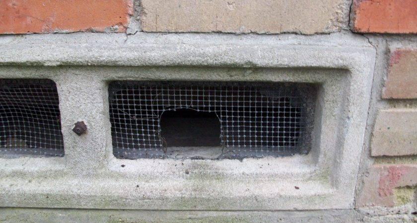 Sealing Crawl Space Homeownerbob Blog
