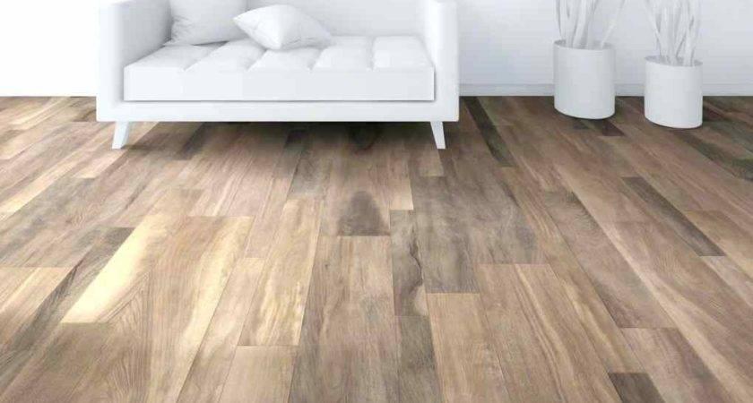 Shaw Vinyl Flooring Plain Alliance Floor
