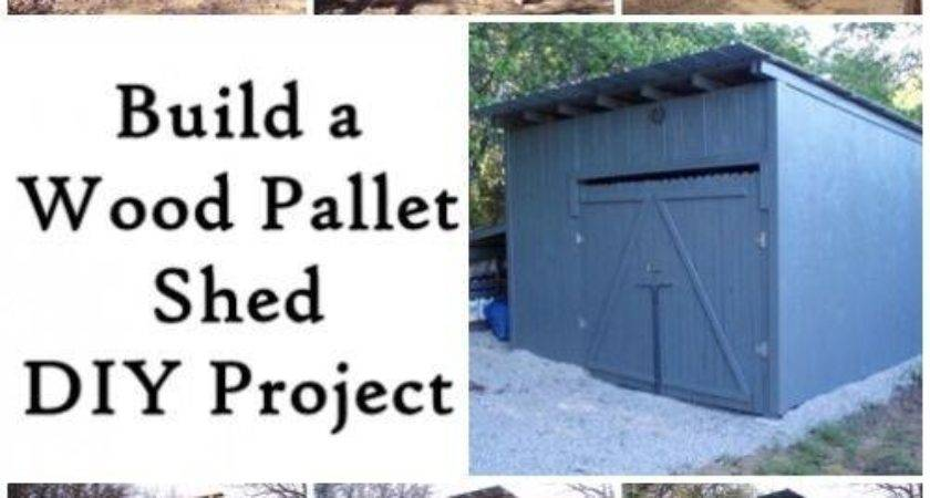 Shed Made Pallets Diy Cozy Home