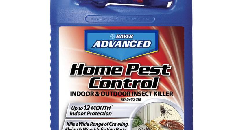 Shop Bayer Advanced Home Pest Control Gallon Insect