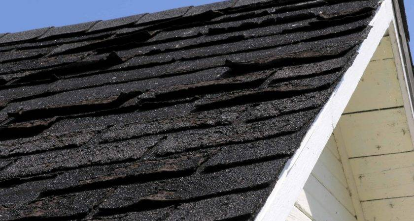 Signs Your Shingle Roof Needs Repair Archives Zroofing