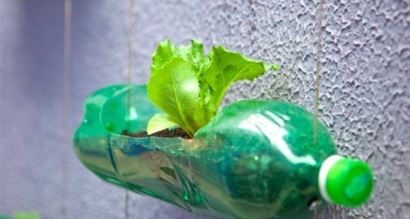 Spunky Urban Wall Garden Created Recycled Plastic