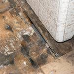 Subfloor Repairs Sheet Vinyl Ceramic Tile