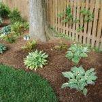 Unpretentious Landscaping Around Trees Landscape Designs