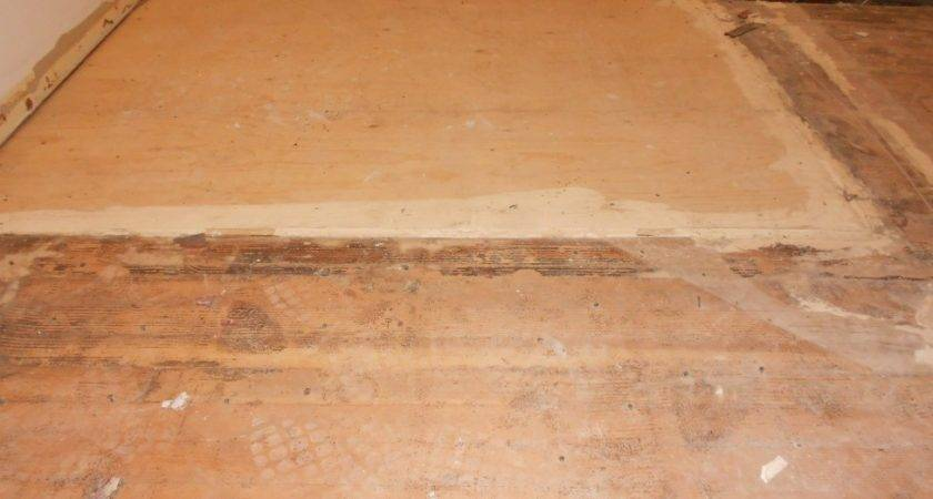 Using Floor Leveler Plywood Carpet Vidalondon