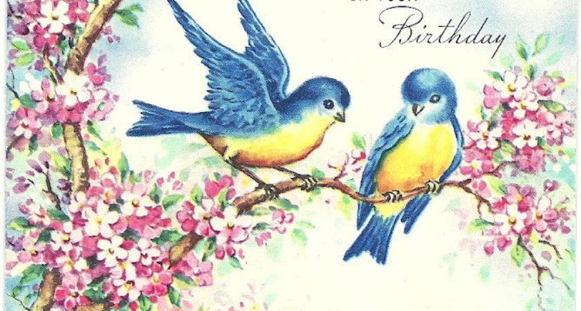 Vintage Bluebird Drawing