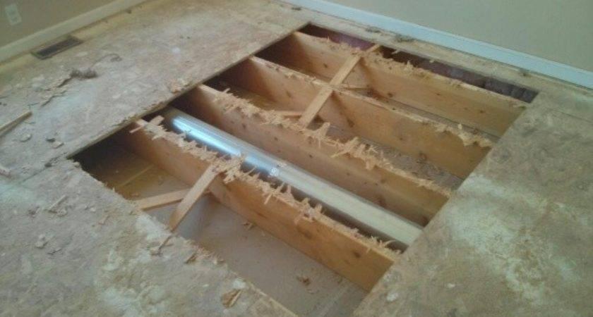 Vinyl Flooring Water Damage Wood Floors