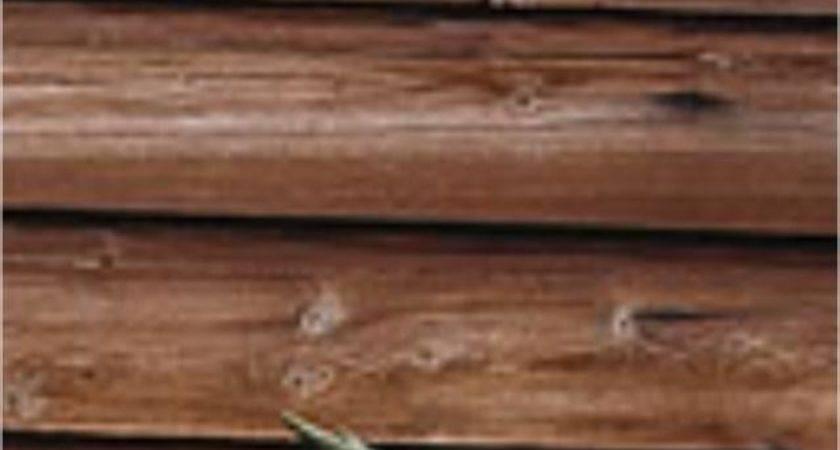 Vinyl Wood Siding Photos