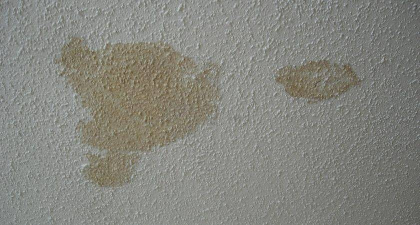 Water Stains Your Ceiling Barrie Home Inspections