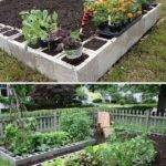 Ways Growing Successful Vegetable Garden