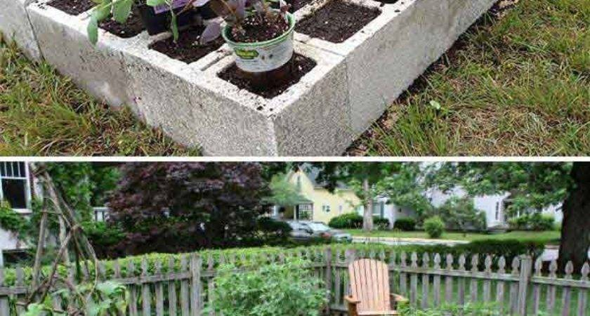 Ways Growing Successful Vegetable Garden