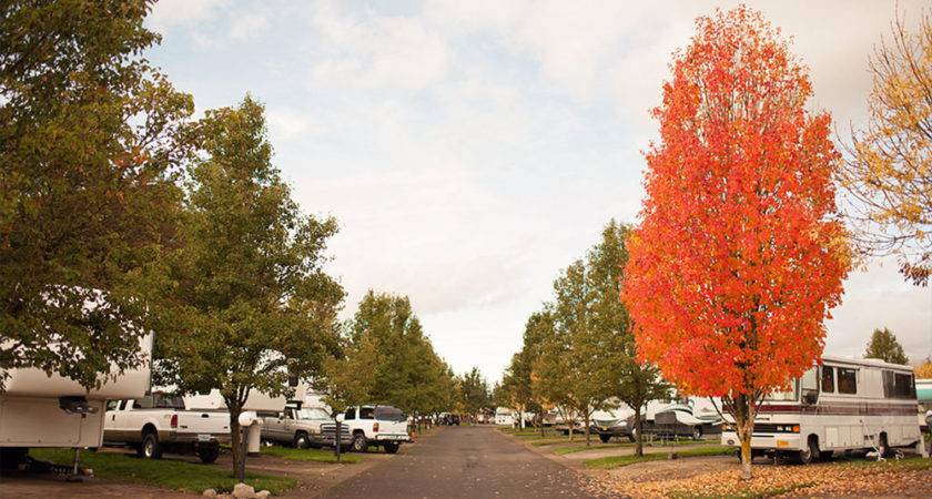 Willamette Wine Country Park Dayton Parks