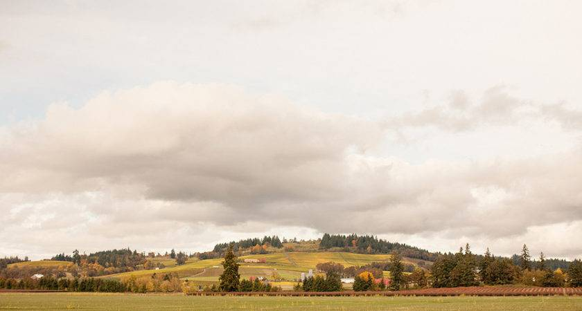 Willamette Wine Country Park Find Campgrounds Near