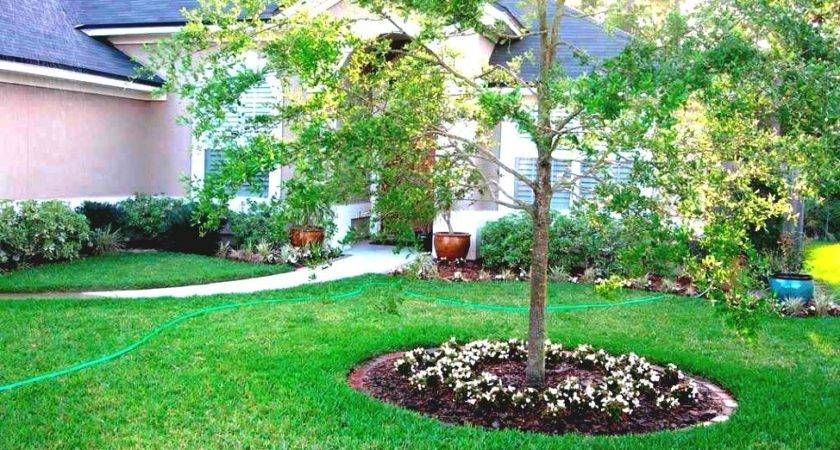 Wonderful Simple Front Garden Ideas Green Grass
