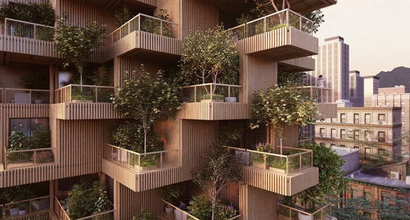Wooden High Rise Tower Giant Treehouse City